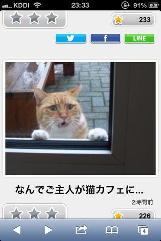 おもしろ猫画像】特選ボケて 名作まとめ13 うとうと情報局